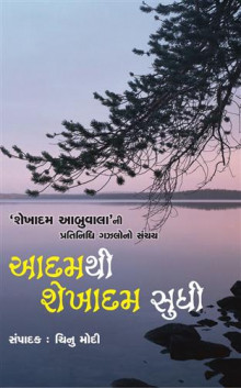 Aadam Thi Shekhadam Sudhi Gujarati Book Written By Chinu Modi