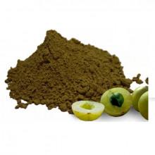 Goose Berry Powder (આમળા ચુર્ણ)