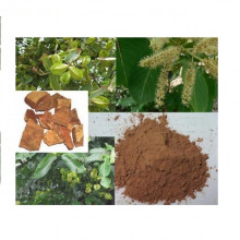 Arjun tree Powder (અર્જુન છાલ  પાવડર)