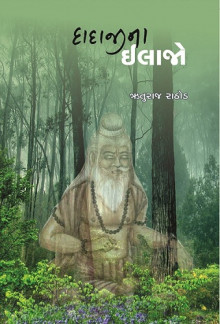 Dadaji Na Ilajo Gujarati Book Written By Ruturaj Rathod