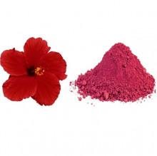 Shoe Flower Powder (જાસુદફુલ પાવડર)