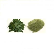 Limda Pan Powder (લીમડા પાન  પાવડર)