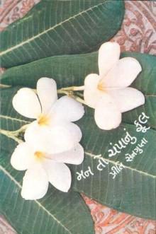 Man To Champa Nu Ful Gujarati Book Written By Preety Sengupta