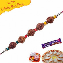 Five Natural Rudraksh with Pearl Beads Rakhi