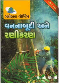 Vannabudi Ane Ranikaran Gujarati Book Written By Biren Kothari