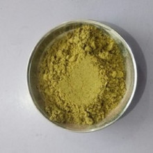 Fennel Powder (વરીયાળી પાવડર)
