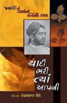 Yadi Bhari Tya Aapani (book)